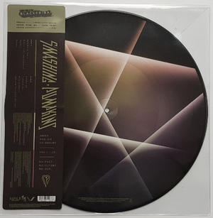 Smashing Pumpkins-Shiny And Oh So Bright - Vol. 1/LP - No Past, No Future, No Sun /  Napalm Records