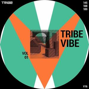 Va - Tribe Vibe Vol 01
