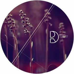 Deepbass - Night Without Stars Ep/ Edit Select Rmx / Dynamic Reflection