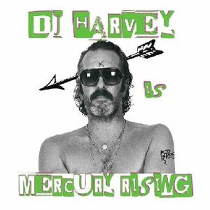 Va - Dj Harvey Is The Sound Of Mercury Rising / Pikes Records