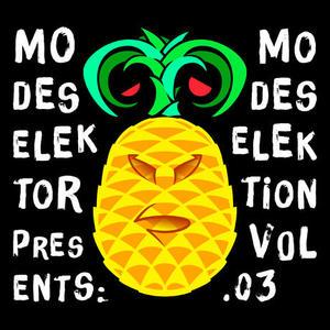 Modeselektor Proudly Presents Modeselektion Vol.3