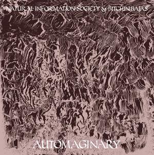 Natural Information Society* & Bitchin Bajas-Automaginary / Drag City 