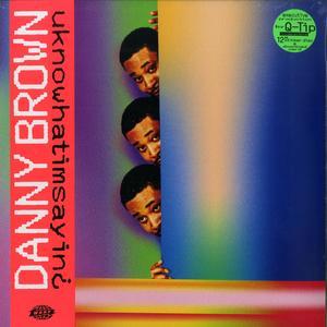 Danny Brown - uknowhatimsayin¿ / Warp