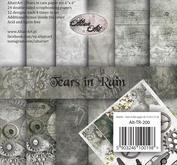 Altair Art - Tears in Rain - 6x6 block