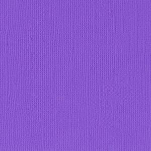 Cardstock Violet