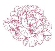 Couture creations - Mini clearstamps -Pretty Peony Mini Stamp