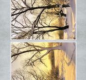 Nellie Snellen - Klippark - Nature 1