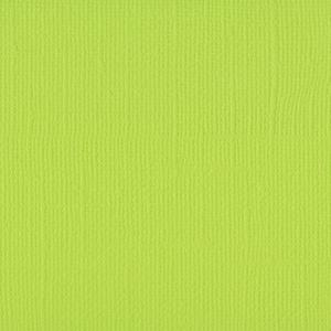 Cardstock  Lime