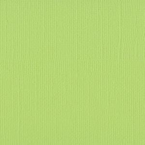 Cardstock Celery