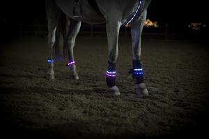 LED Benljus 2-pack