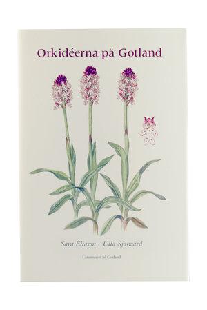 Orkidéerna på Gotland