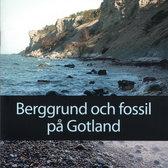 Berggrund och fossil på Gotland