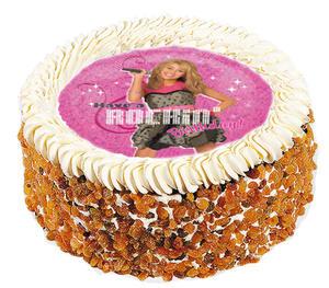 Hannah Montana 10
