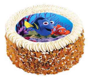 Hitta Nemo 1