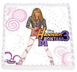Hannah Montana 13