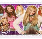 Hannah Montana 14