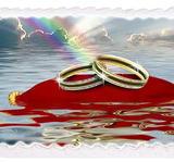 Bröllop 5