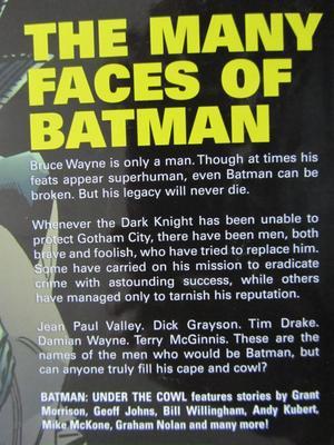 Batman - Under the Cowl