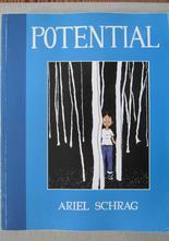 Potential av Ariel Schrag