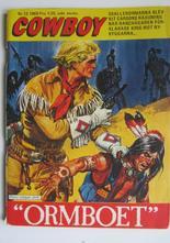 Cowboy 1969 13 Fn