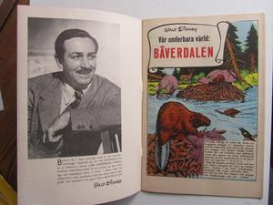 Walt Disney's Bäverdalen 1956 Fn-