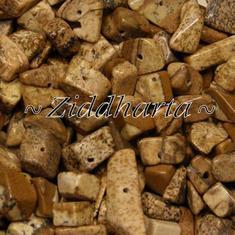 10gr Picture Jaspis chips - Bild Jaspis