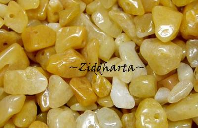 10gr Golden Jade chips
