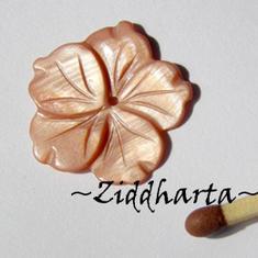 1 Snäckskalspärla Mother of Pearl: Varmrosa Snäckskals-blomma MOP #38