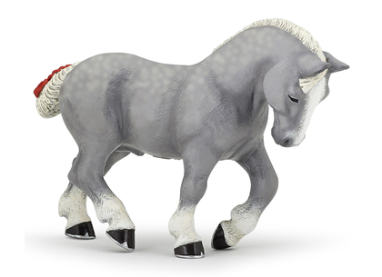 Percheron hingst grå