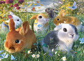 Picture 3D Bunnies