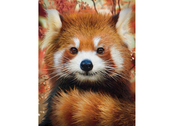 Picture 3D Baby red panda