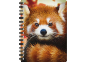 Notebook 3D Baby red panda large
