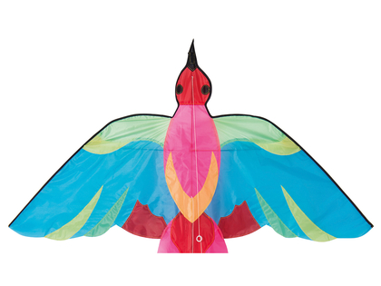 Kite Bird
