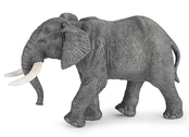 Elefant Afrikansk