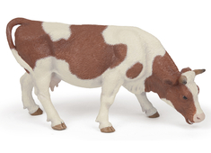 Cow Simmental grazing brown/white