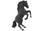 Reared Up Horse black