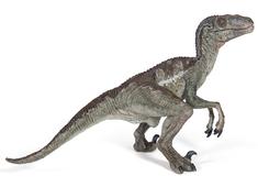 Velociraptor (Deinonychus)