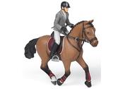Tävlingsryttare med häst