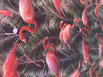 Alice Dress  Flamingo