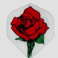 England Rose Vit