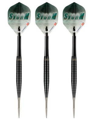 Target Precision Perfect Storm Modell A 23g