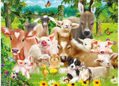 Picture 3D Baby Farm Animals