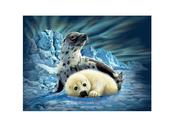 Picture 3D Harp Seals