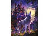 Picture 3D Castle Wolf