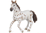 Appaloosa Mare (brown)