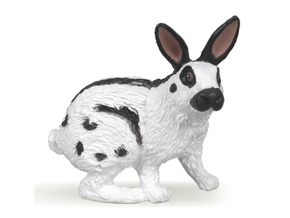 Kanin (svart/vit)