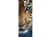 Bookmark 3D Blue eyes
