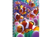 Anteckningsbok 3D Clownfiskar stor