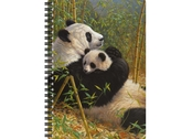 Notebook 3D A new dynasty large