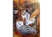 Notebook 3D Owl woods large